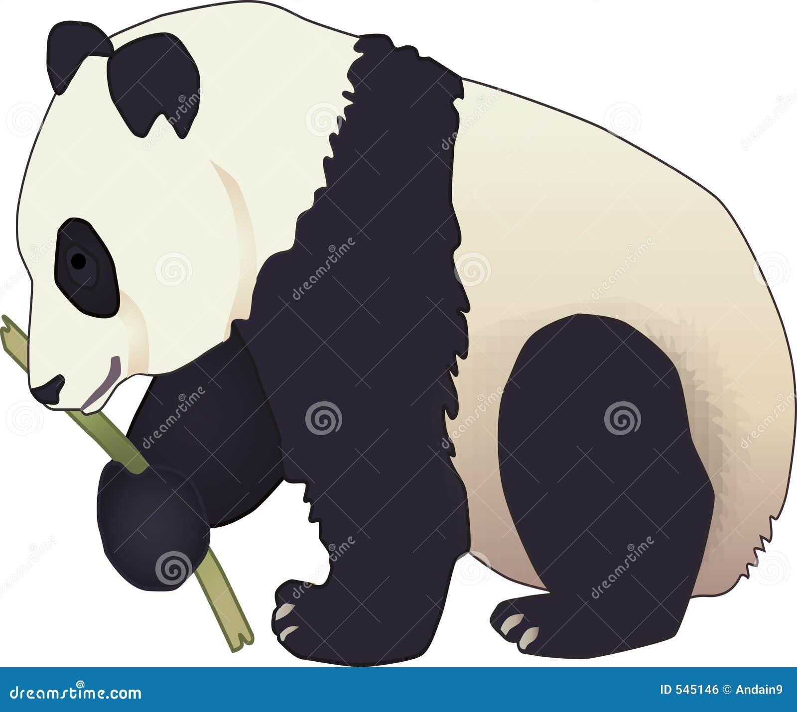 Urso da panda