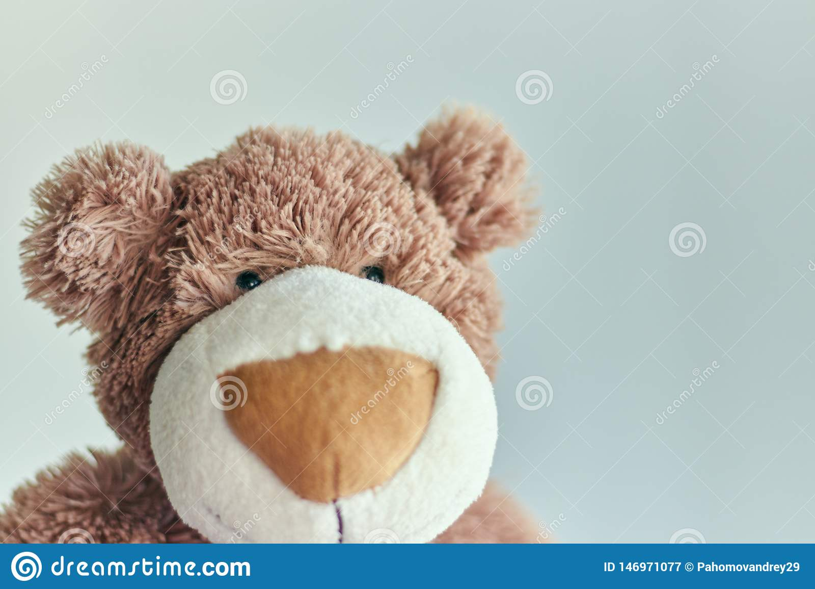 Urso de peluche do brinquedo dos bearchildren da peluche isolado em um fundo claro close up de uma cabe?a de urso de peluche