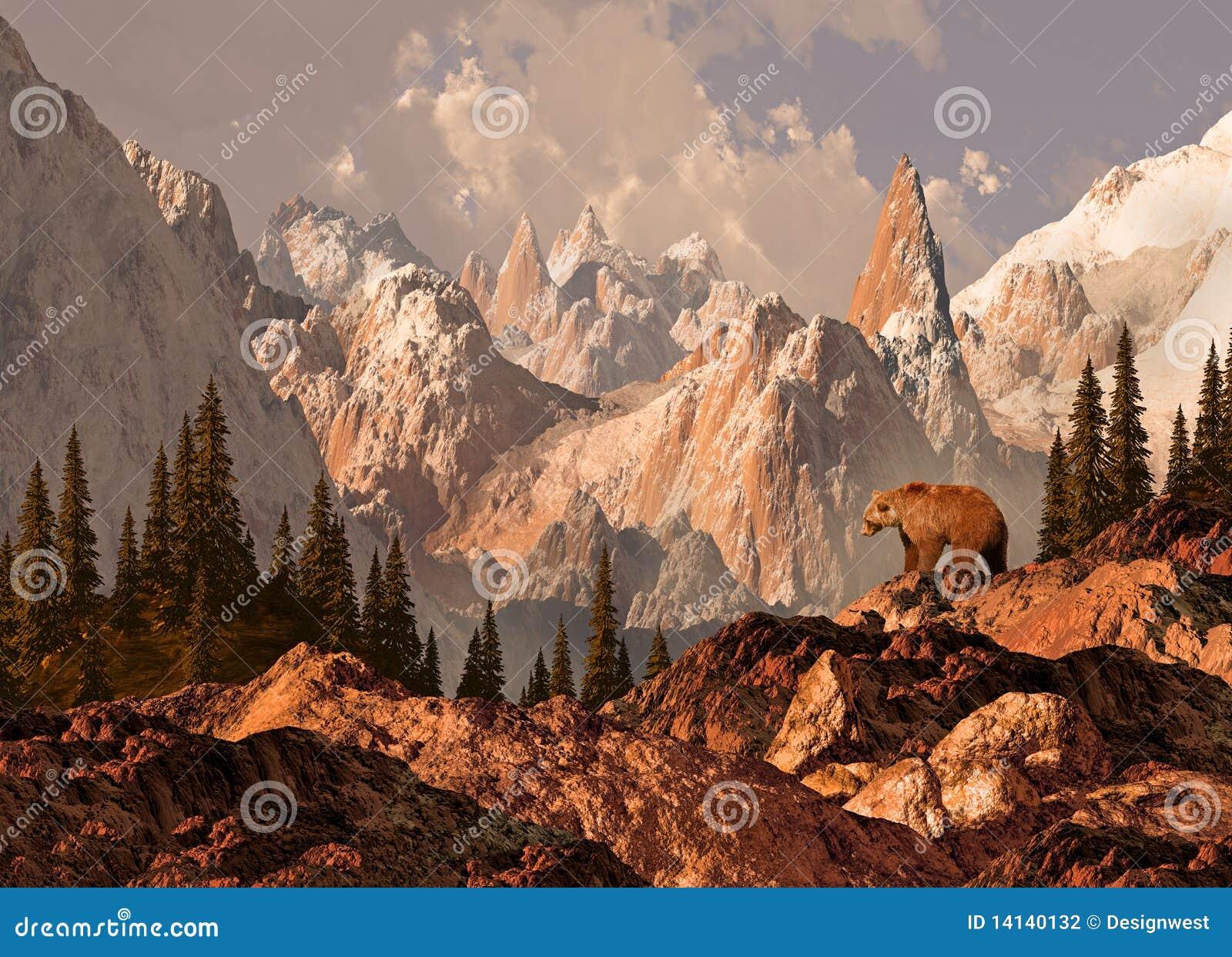 Urso do urso da montanha