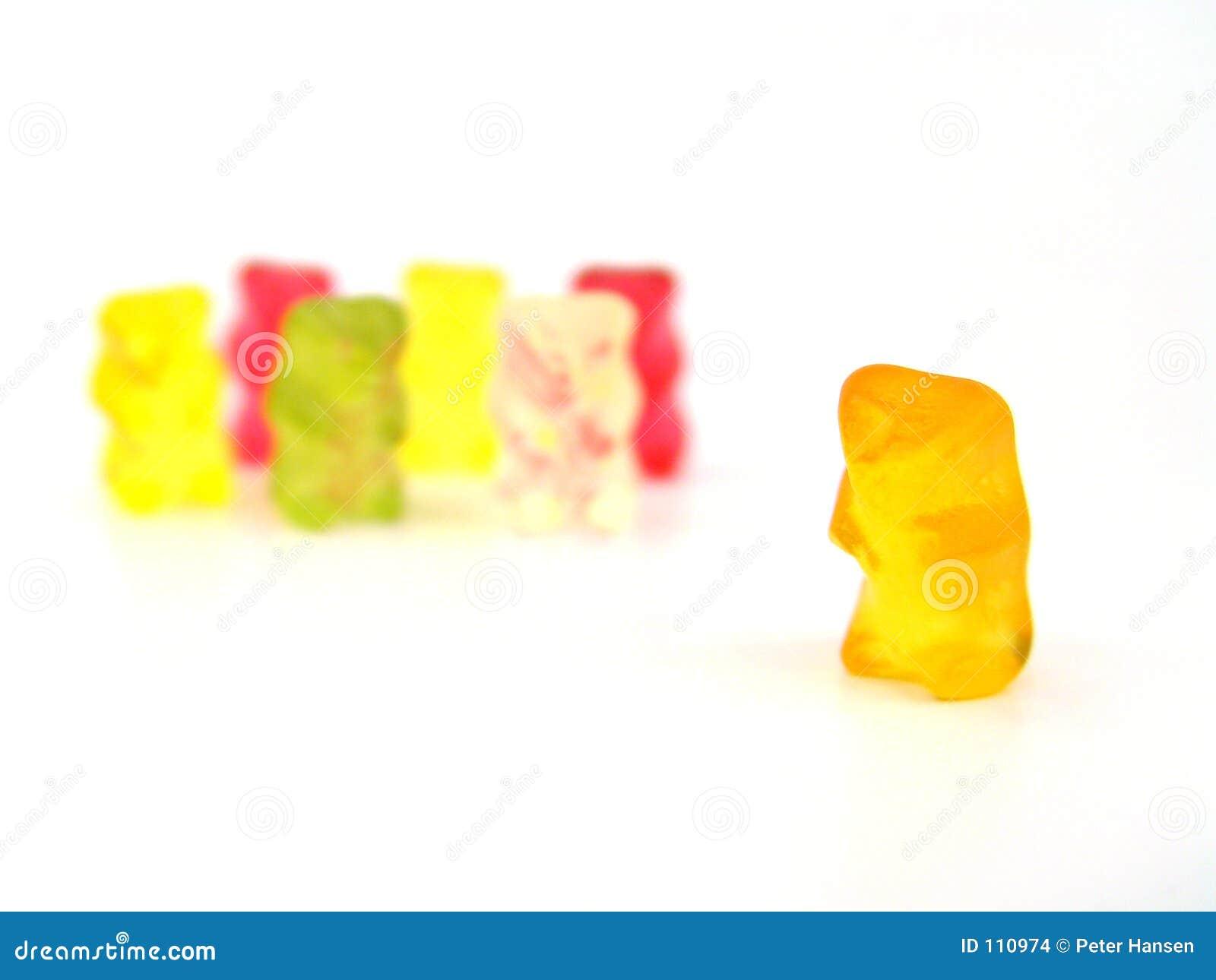 Urso e sua equipe