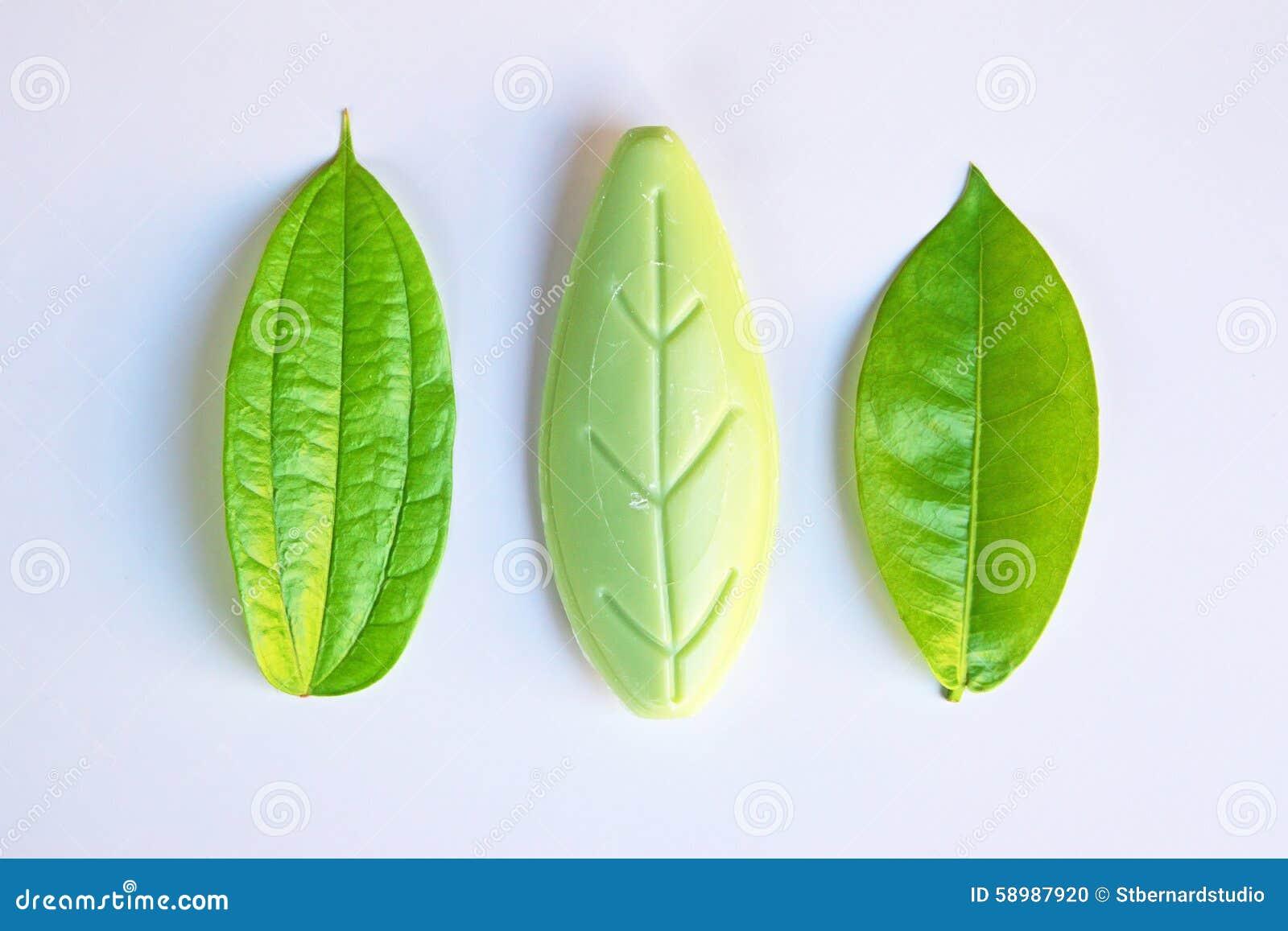 Ursprüngliche und gefälschte Gegenstände (Blätter) neben einander