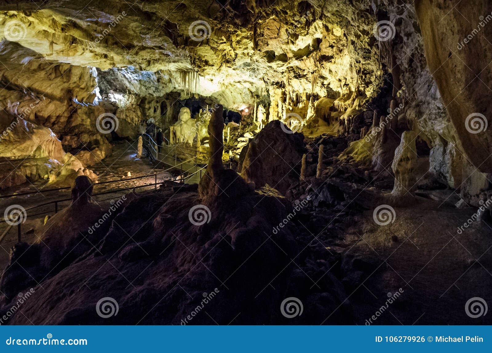 Ursus spelaeus cave in romanian mountains transilvania