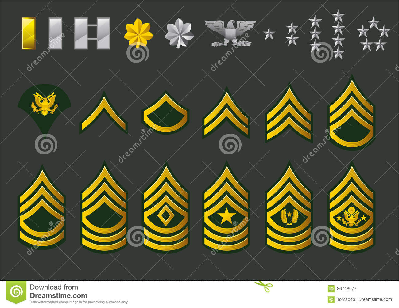 American Army Enlisted Rank Insignia Icons Cartoon Vector