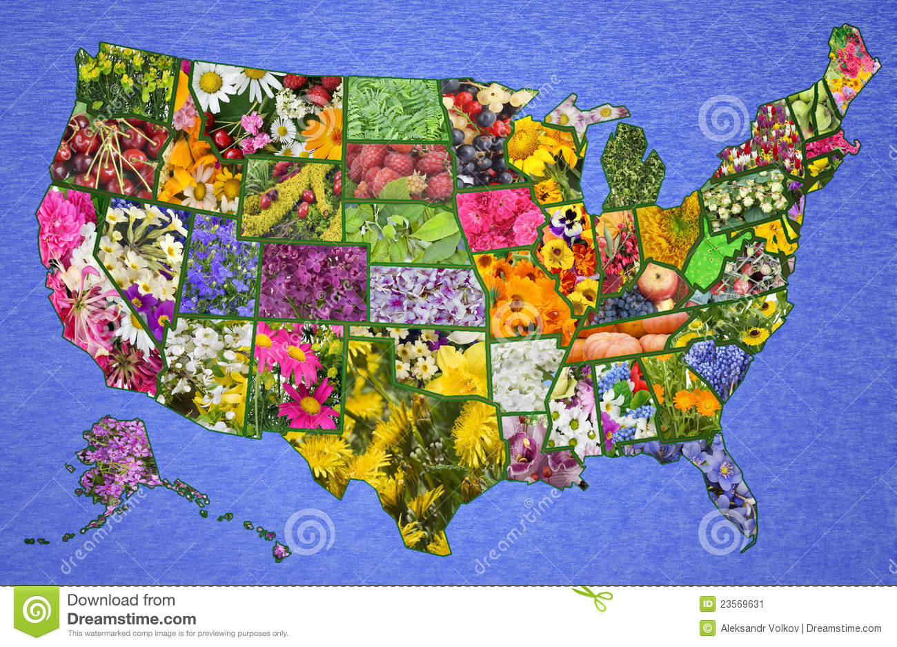 USA American high resolution map from flowers and plants- great green ...