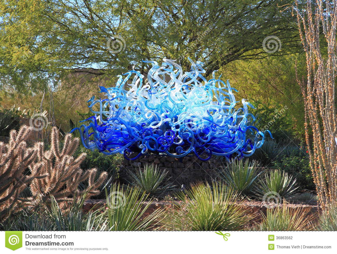 Usa phoenix arizona chihuly sculpture blue fiori sun for Botanical garden timing