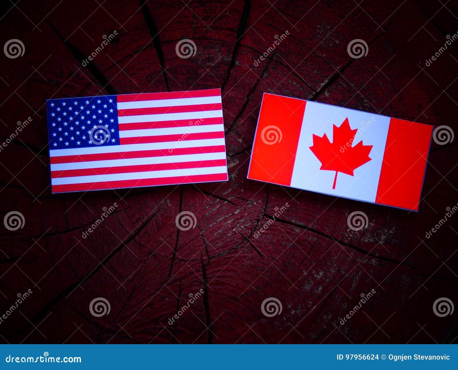 USA flaga z kanadyjczyk flaga na drzewnym fiszorku odizolowywającym