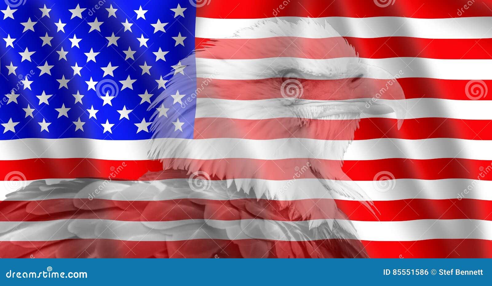 USA kennzeichnen mit einem Weißkopfseeadler
