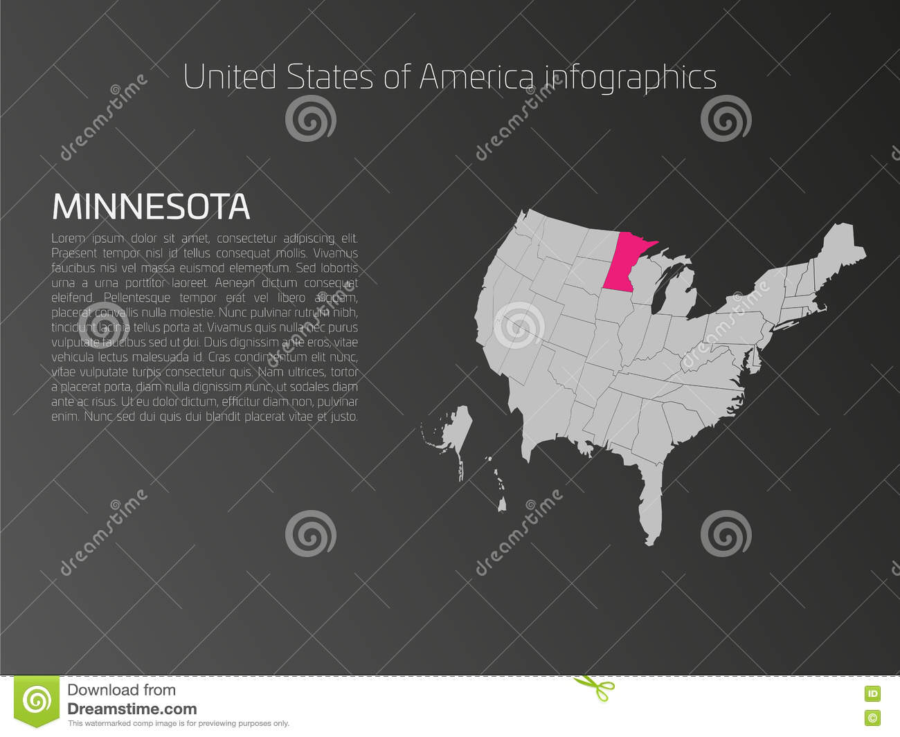 USA Map Infographics Template With Highlighted Minnesota Stock - Map of the us with mn highlighted