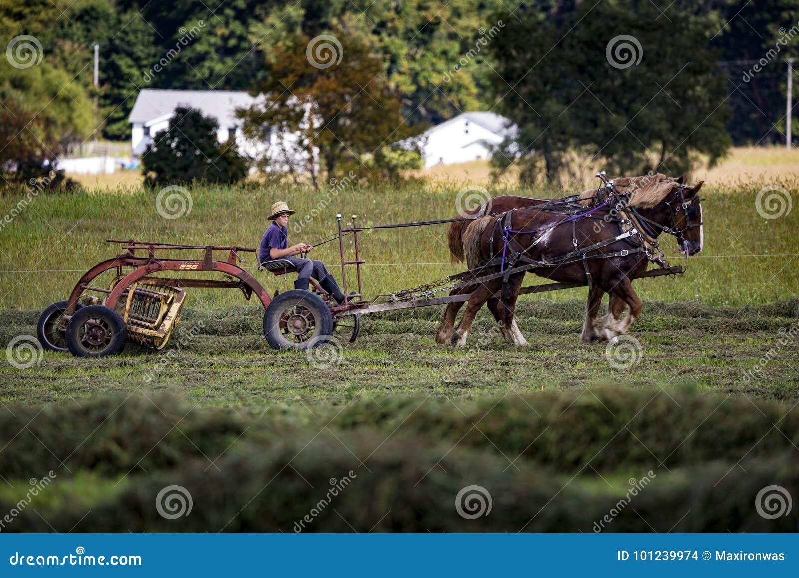 USA - Ohio, Amish -