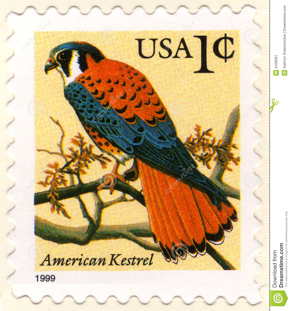 Usa One Cent Postage Stamp Stock Image Image Of Kestrel