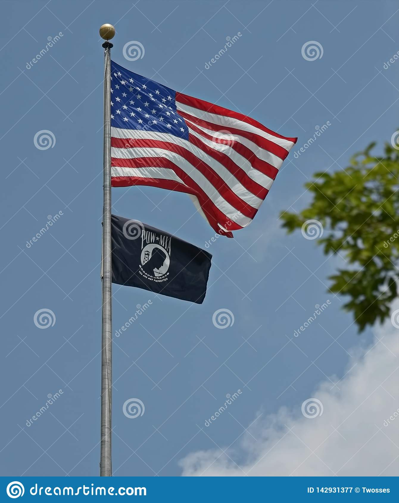 USA POW MIA