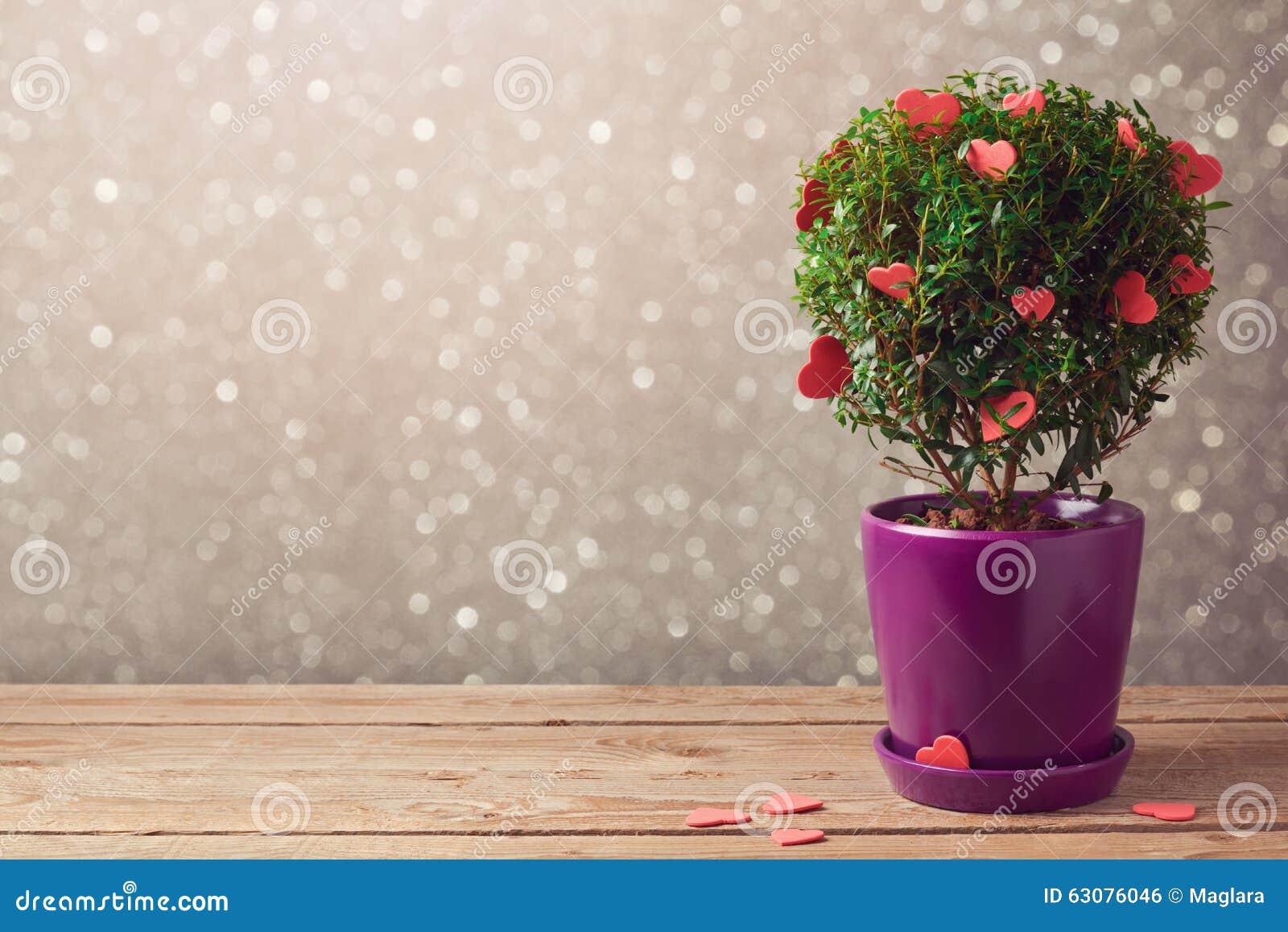 Download Usine D'arbre Avec Des Coeurs Sur La Table En Bois Au-dessus Du Fond De Bokeh Concept Du Jour De Valentine Photo stock - Image du brochure, conception: 63076046