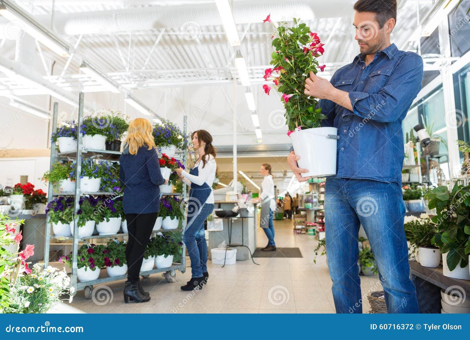 Usine de examen de fleur d homme dans la boutique