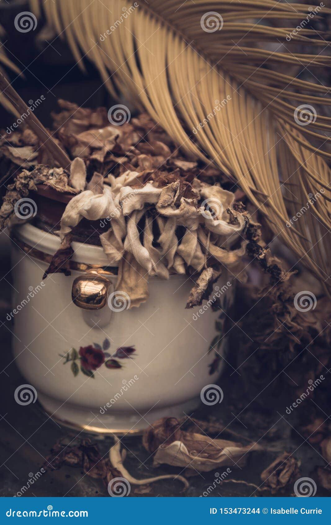 Usine morte dans le pot de fleur de cru
