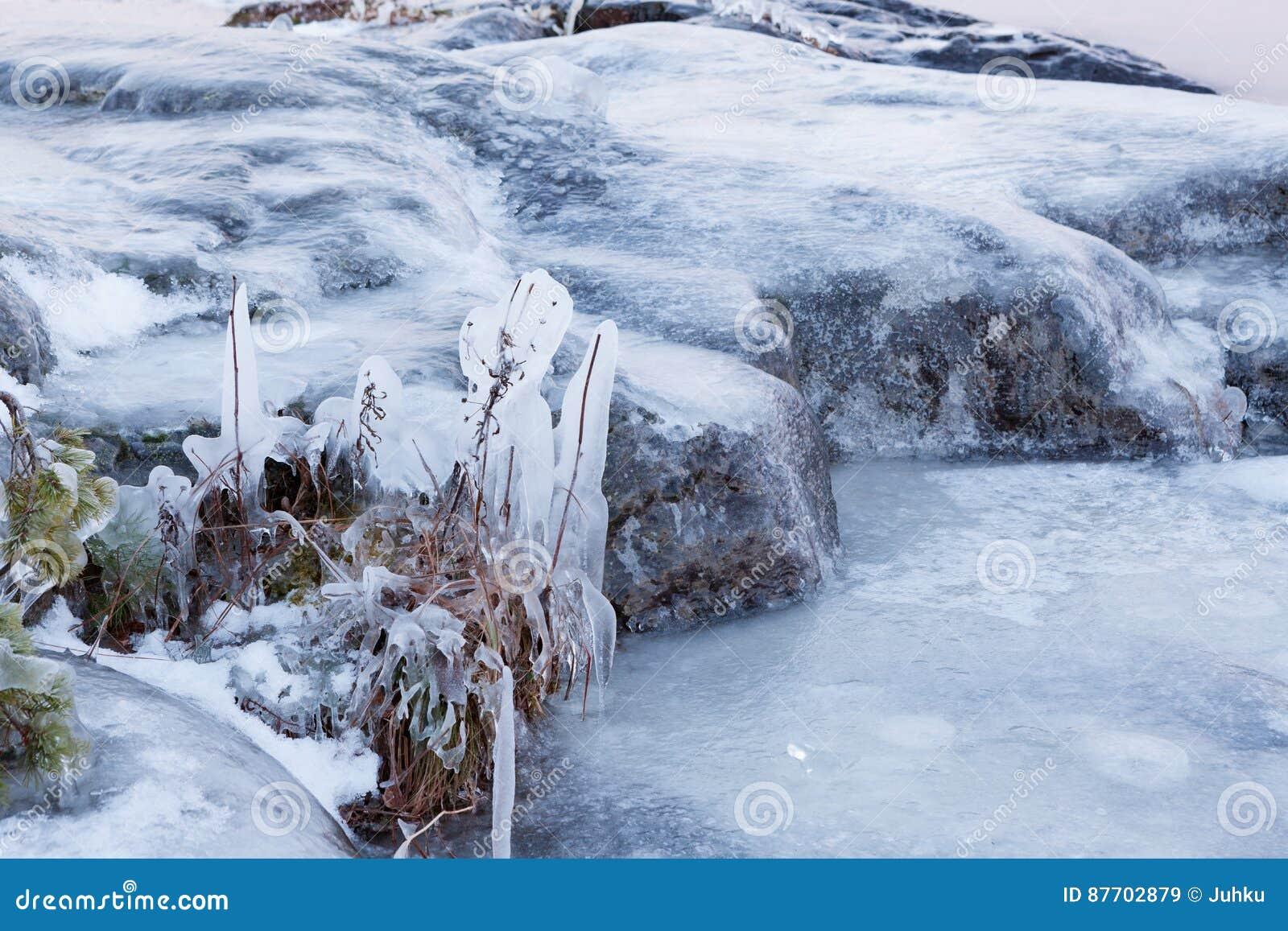 Usines congelées et roche extérieures