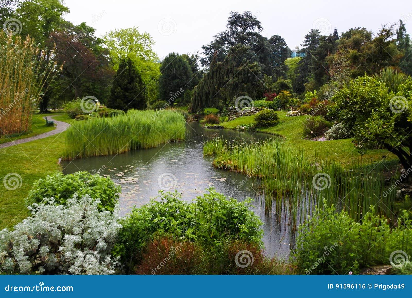 Usines Dans Un Jardin Botanique A Geneve Photo Stock Image Du