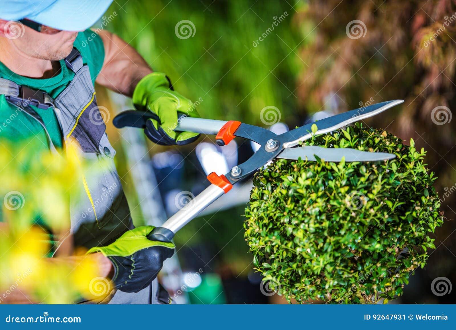 Usines de règlage de jardinier