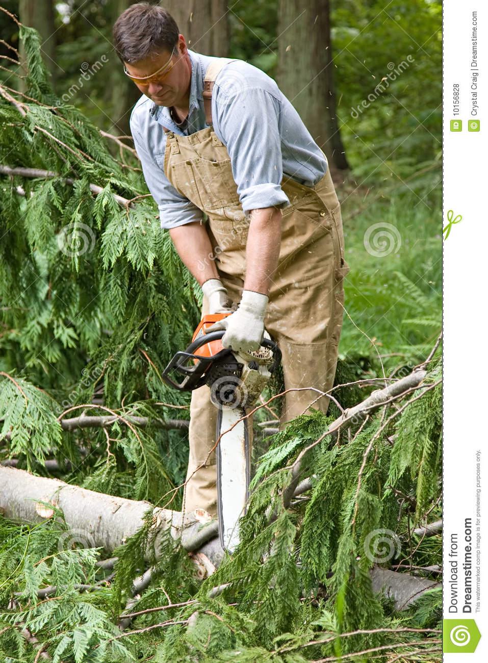 Using chainsaw