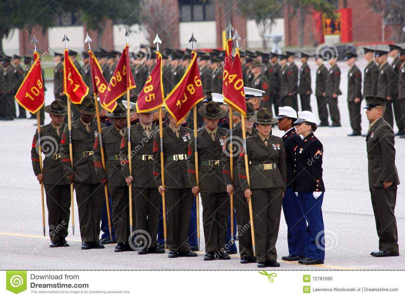 usmc graduation parris island stock images - 12 photos