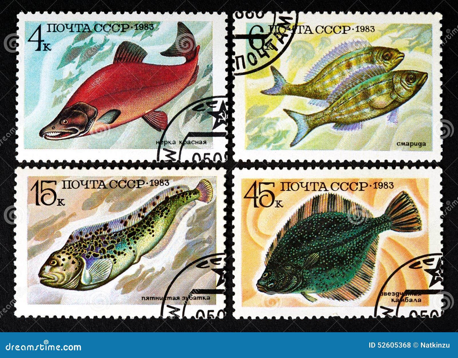 USSR - OKOŁO 1983: serie znaczki drukujący w USSR, przedstawienie ryba OKOŁO 1983,