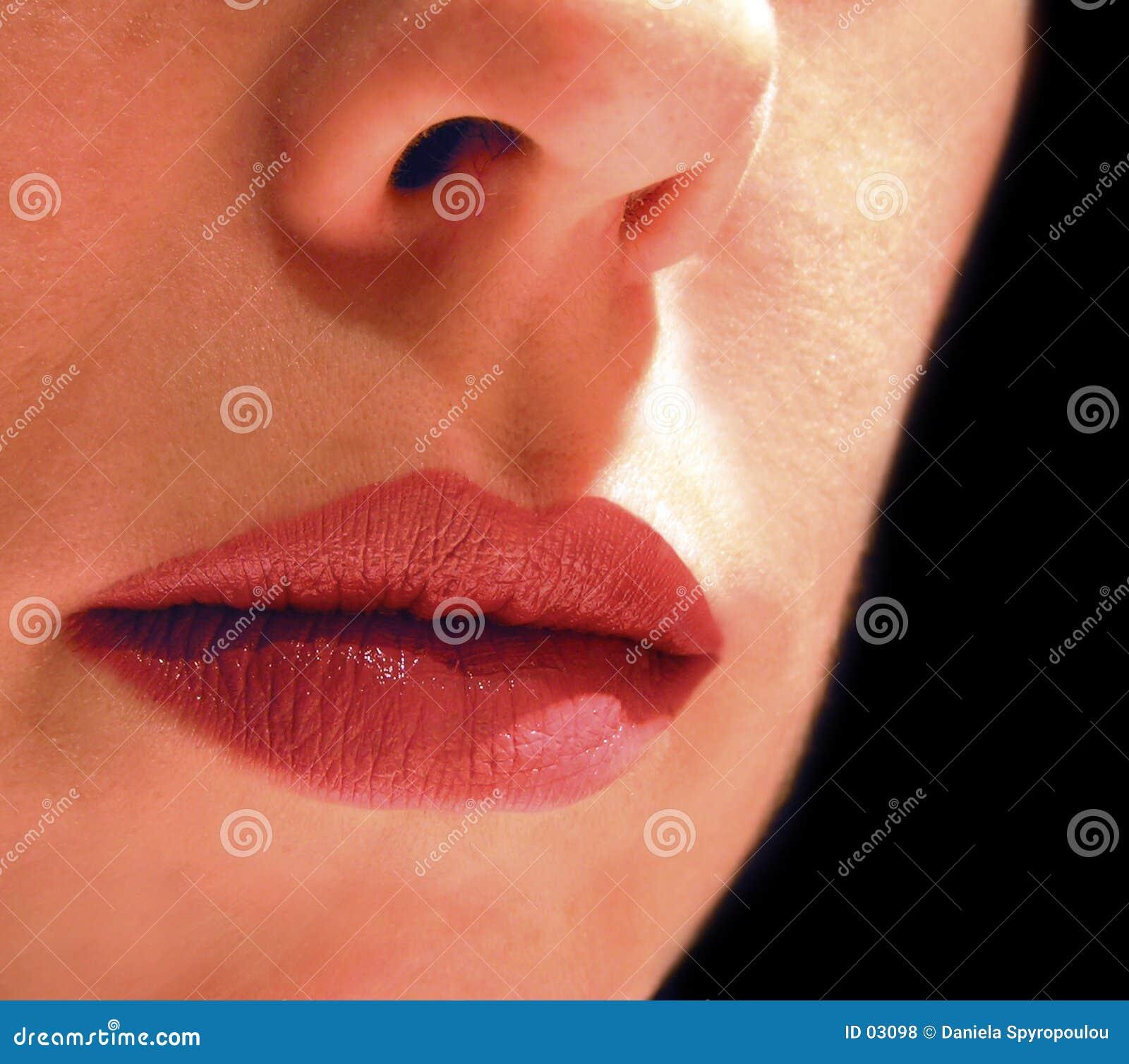 Download Usta zdjęcie stock. Obraz złożonej z wargi, pojęcia, piękno - 3098