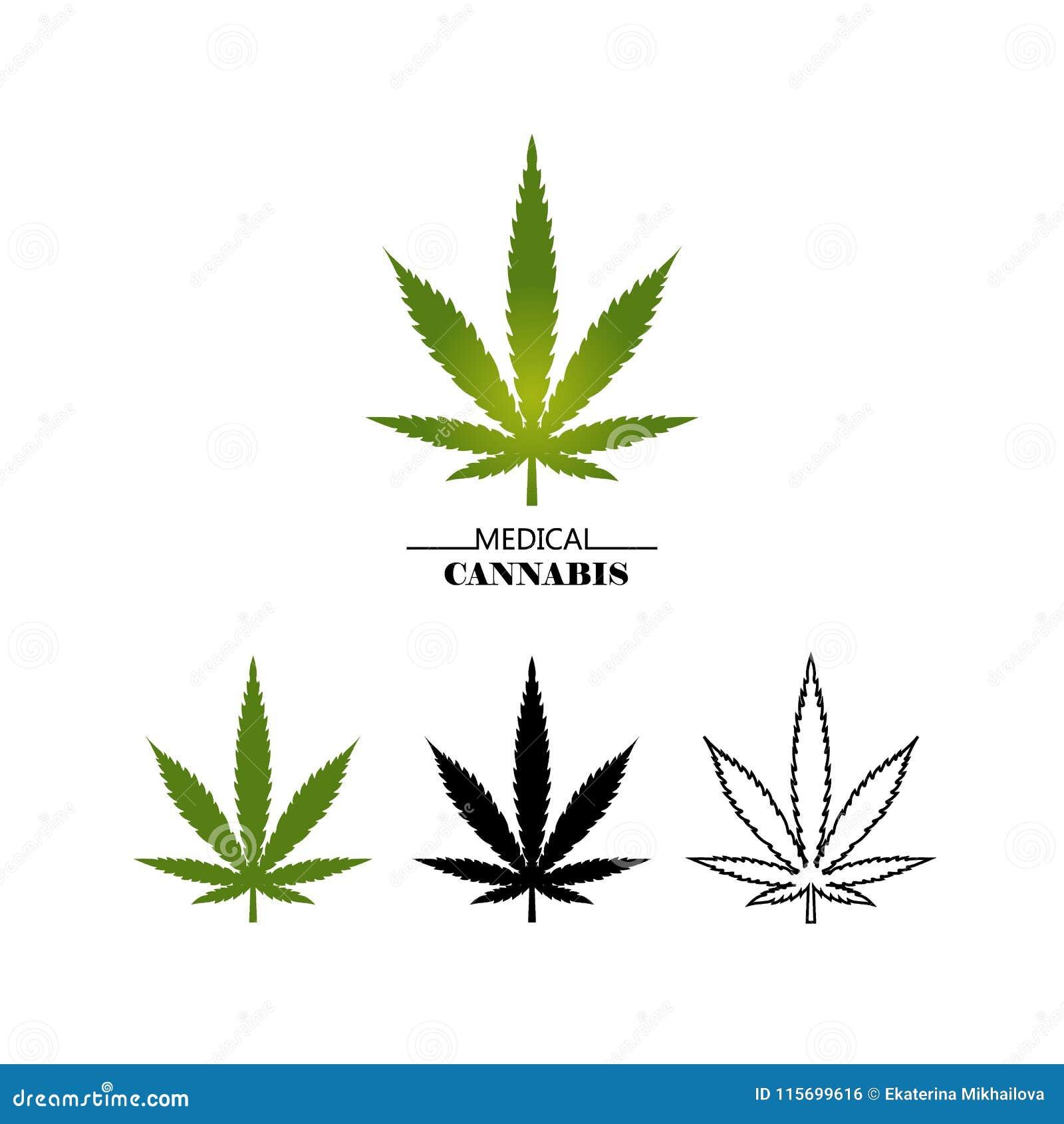 Ustaleni różni logo marihuany liście odizolowywający na białym tle Medyczna marihuany zieleń, czerń i cienieje kreskowego liść -