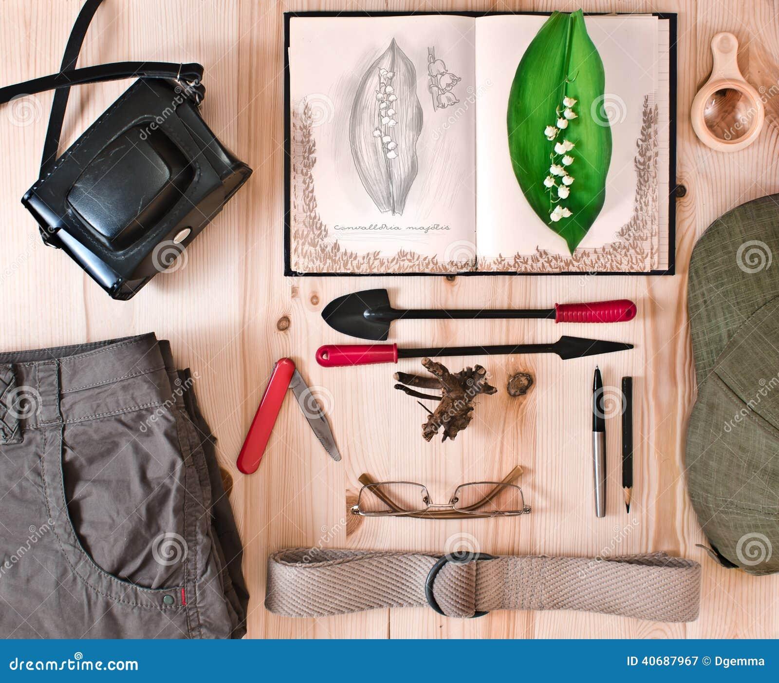 Ustawia badacz naturę Botaniczny pojęcie