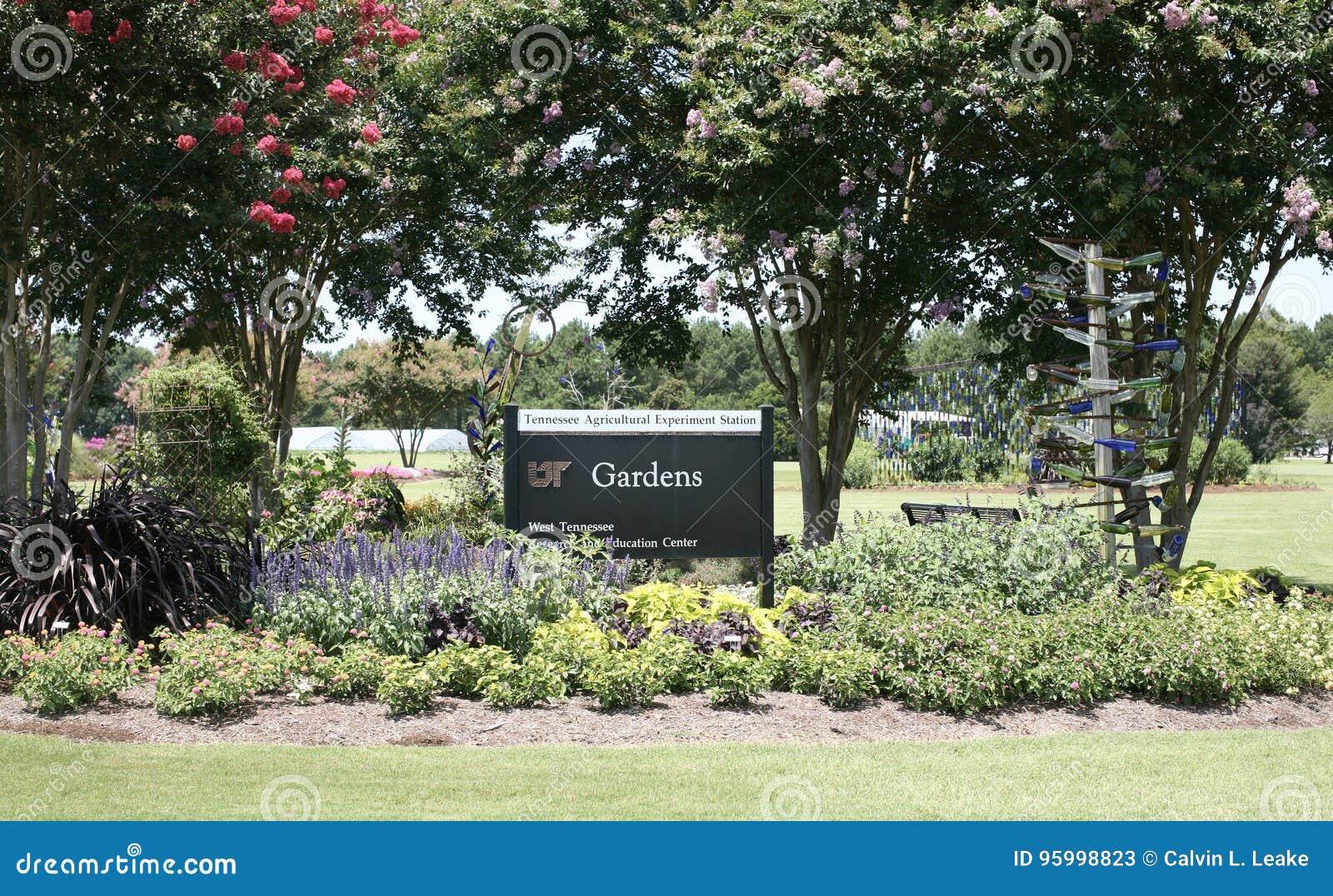 UT arbeta i trädgården på den västra Tennessee Research och utbildningsmitten