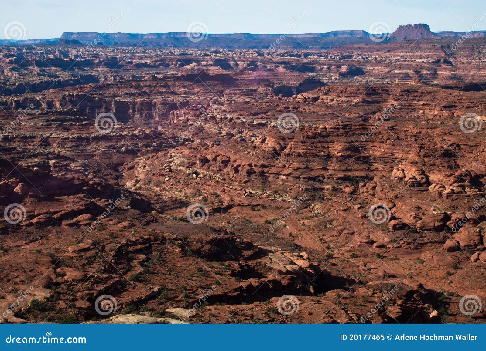 UT-Canyonlands National Pk-White Crack
