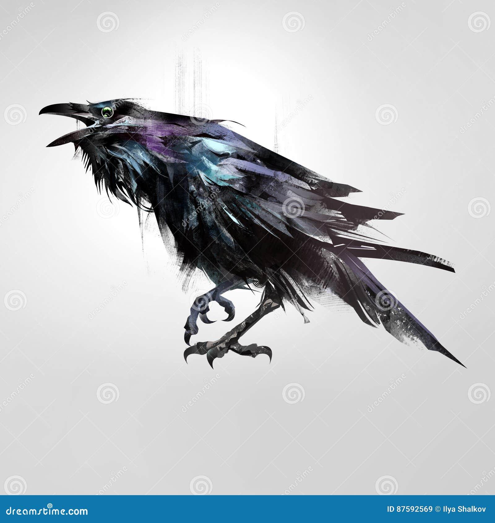 Utdraget isolerat kulört sitta för fågel som är korpsvart