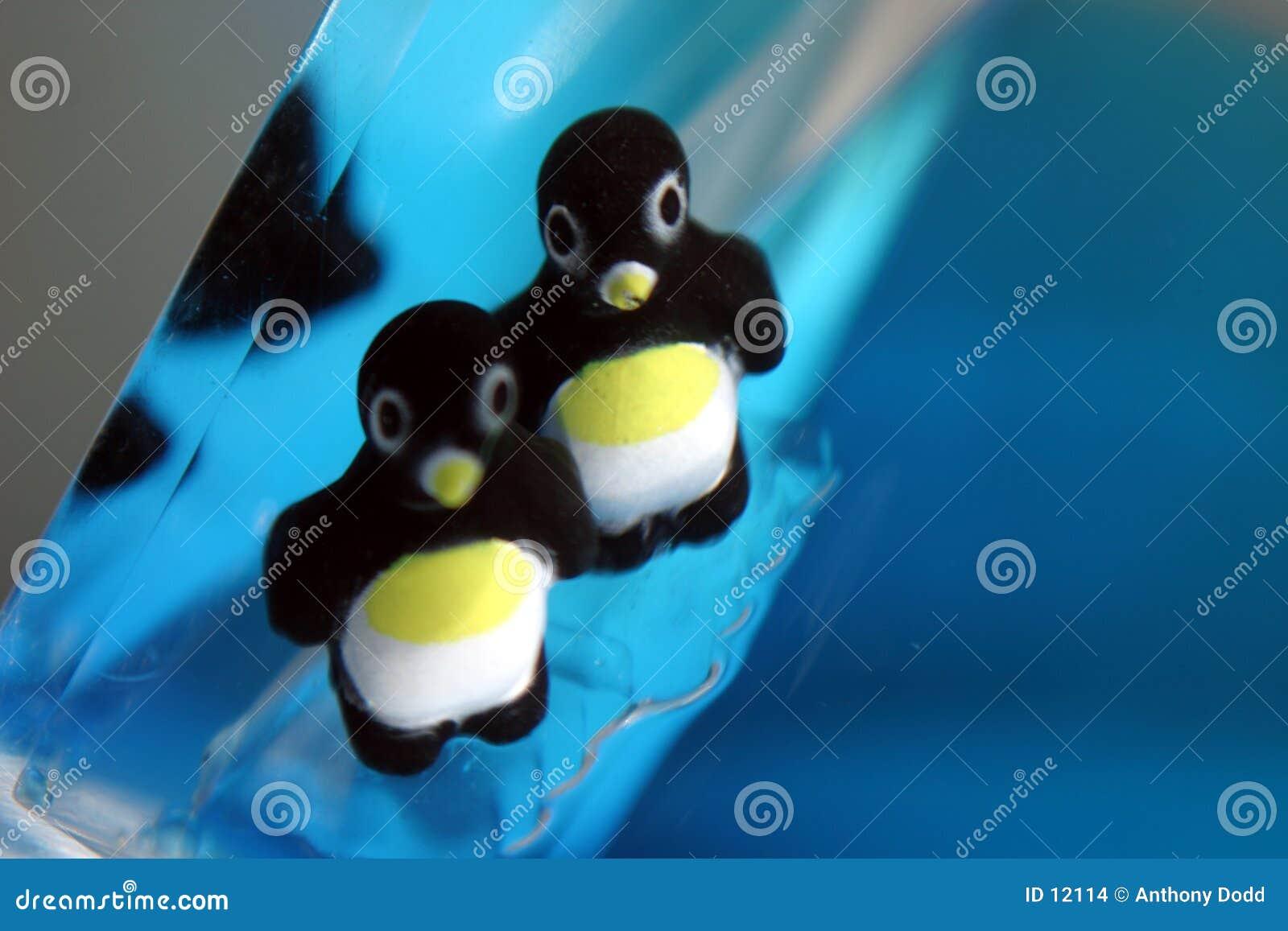 Utför upptåg pingvinet