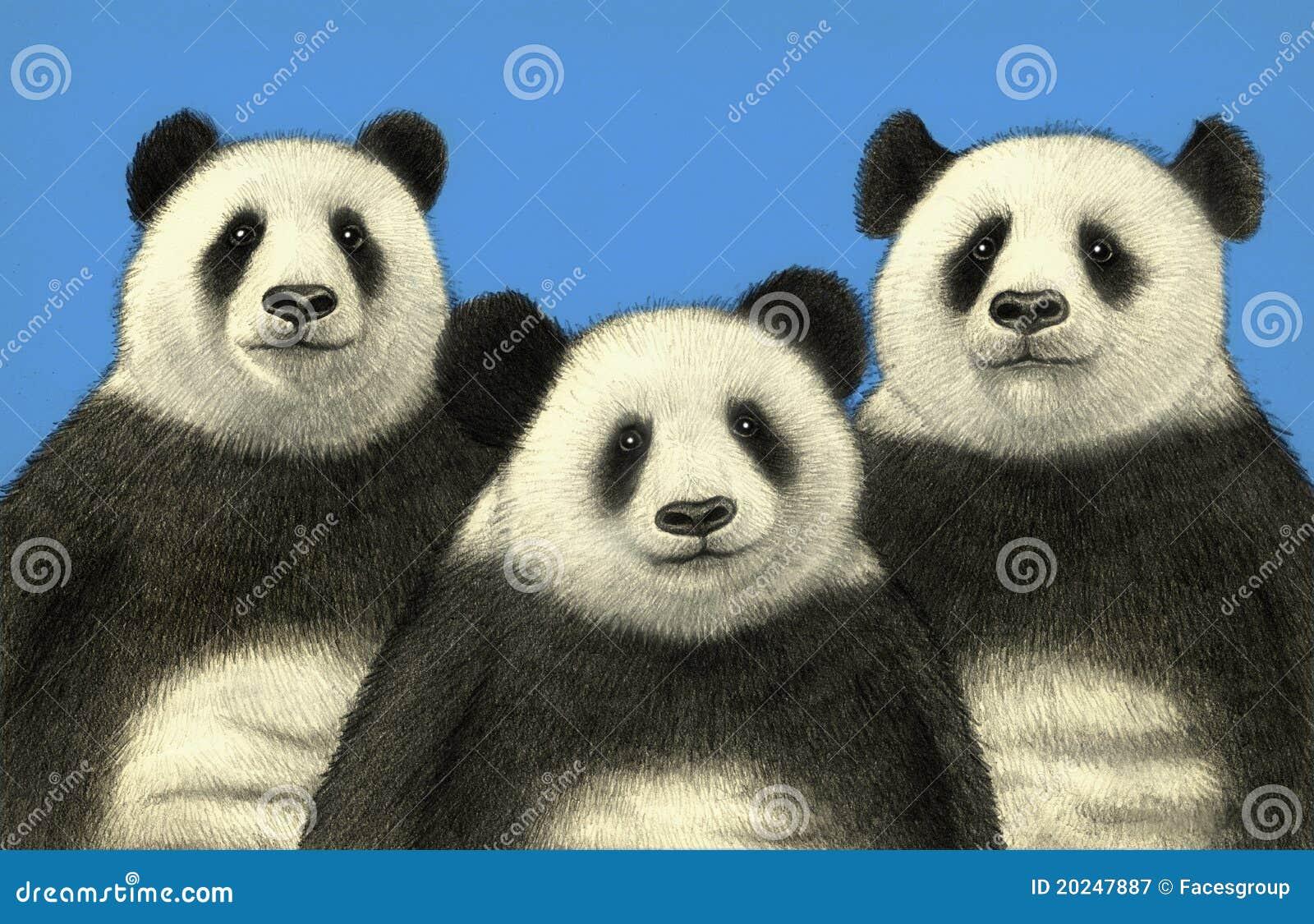 Uthärdar panda tre