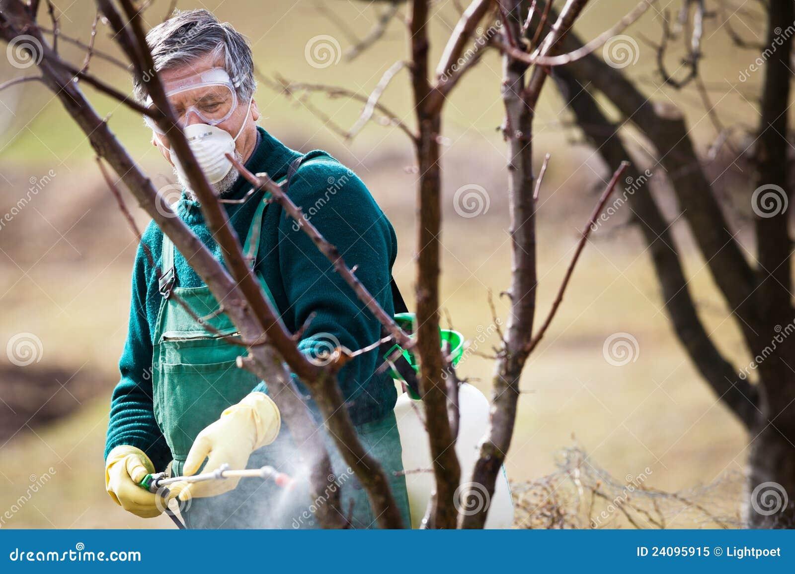 Utilisant des produits chimiques dans le jardin/verger