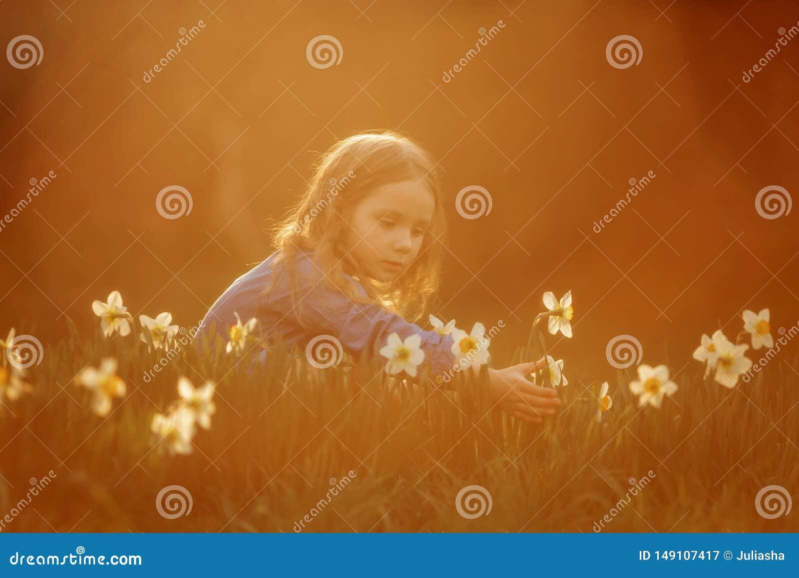 Utomhus- st?ende f?r liten flicka n?ra pingstliljablommor p? solnedg?ngen