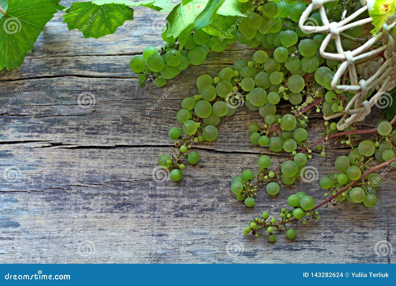 Uva verde con le foglie in un canestro che si trova su un fondo di legno
