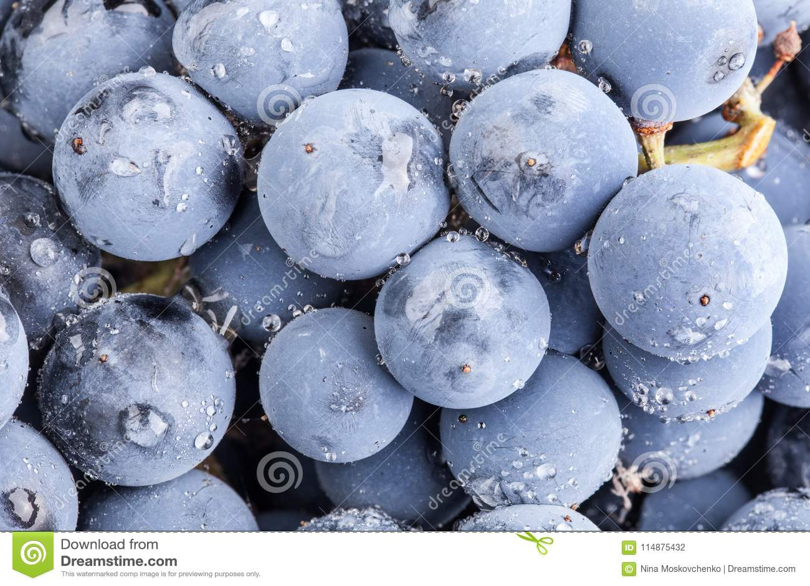 Uvas com gotas da água, fundo