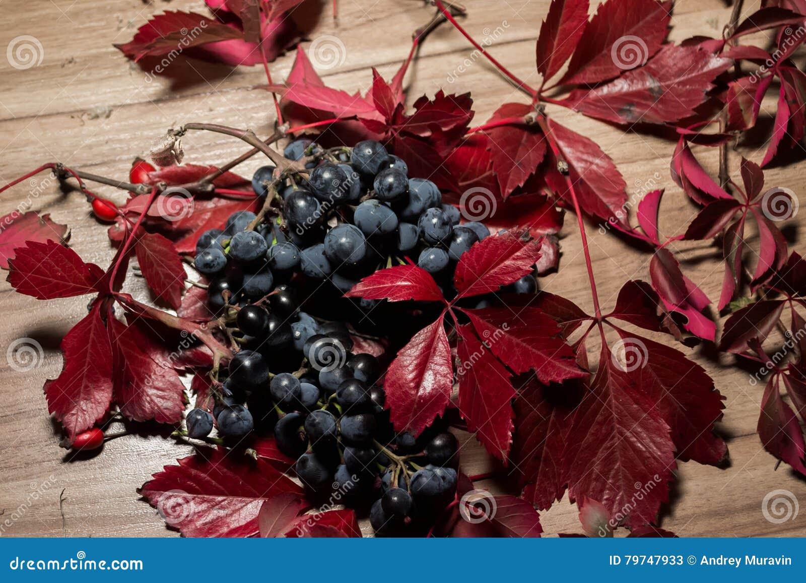 Uvas maduras 3
