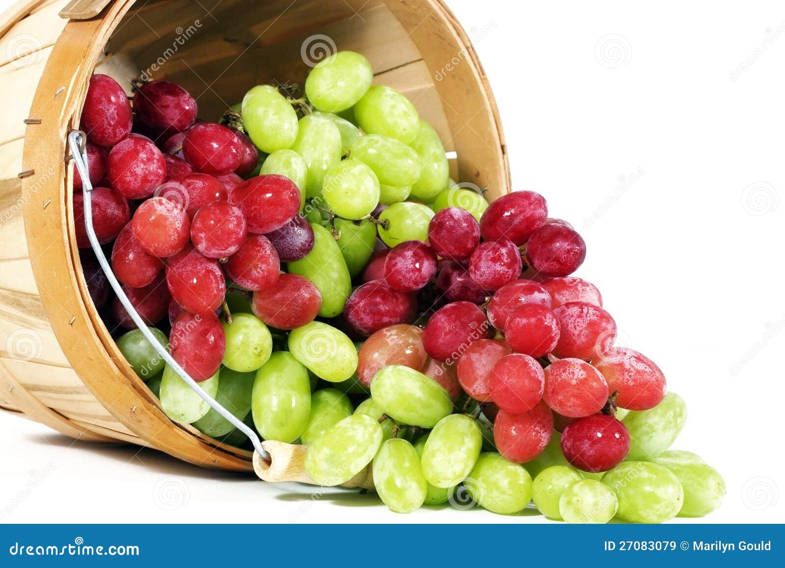 Uvas Seedless vermelhas e verdes de Thompson