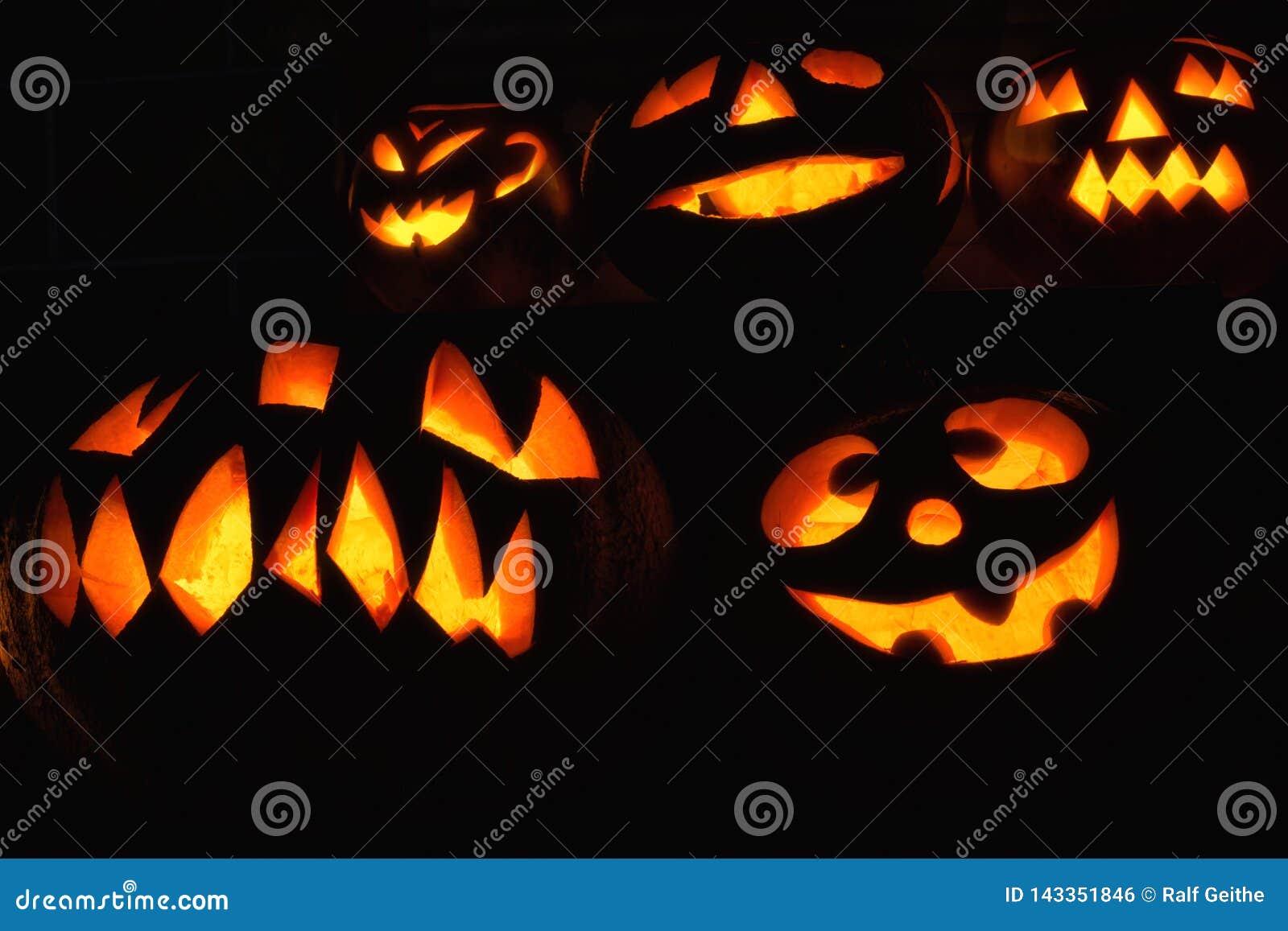 Várias abóboras criativamente cinzeladas na obscuridade para Dia das Bruxas
