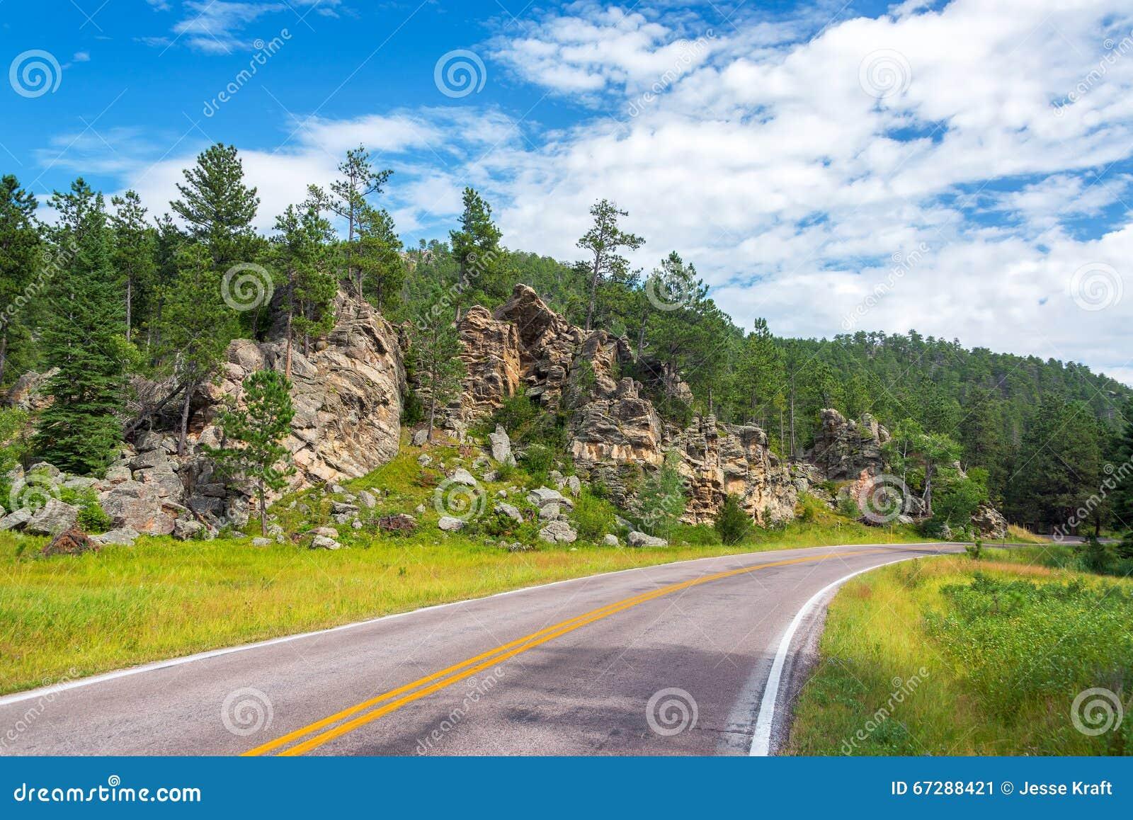 Väg i Custer State Park