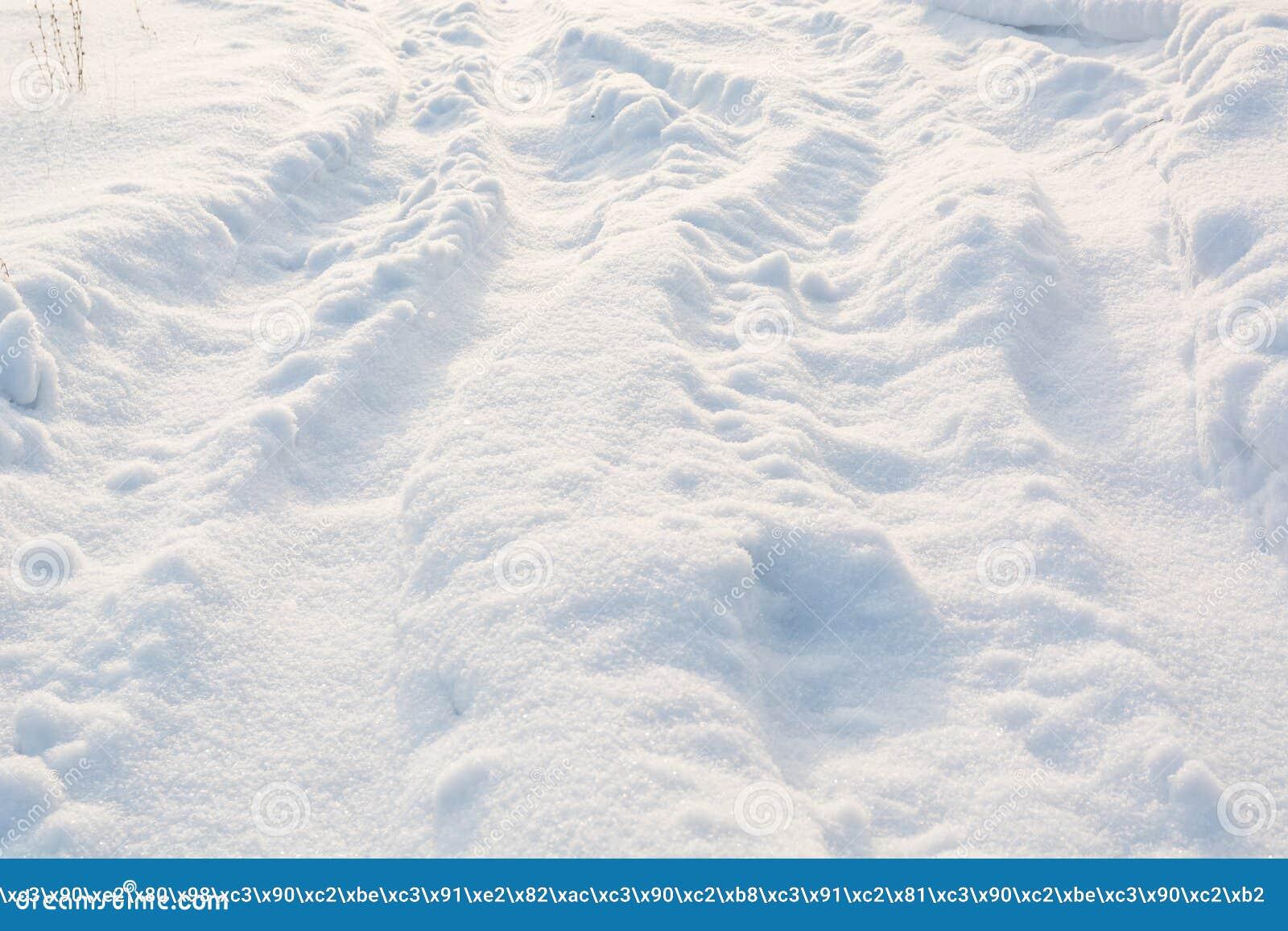 Väg i vinter på snö Enkla snöig däckspår - stående