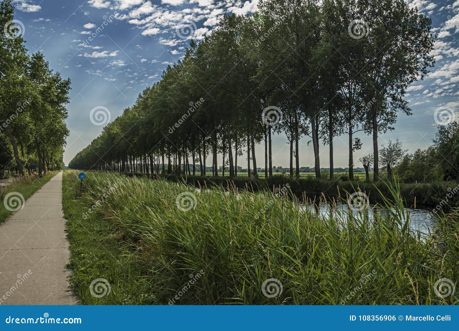 Väg och kanal med dungen och buskar längs den, i ljuset för sen eftermiddag och den blåa himlen, nära Damme