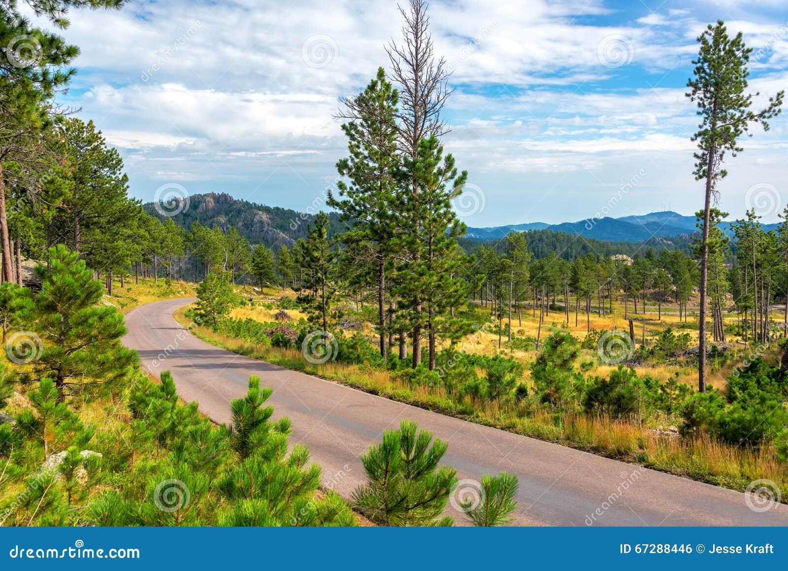 Väg till och med Custer State Park