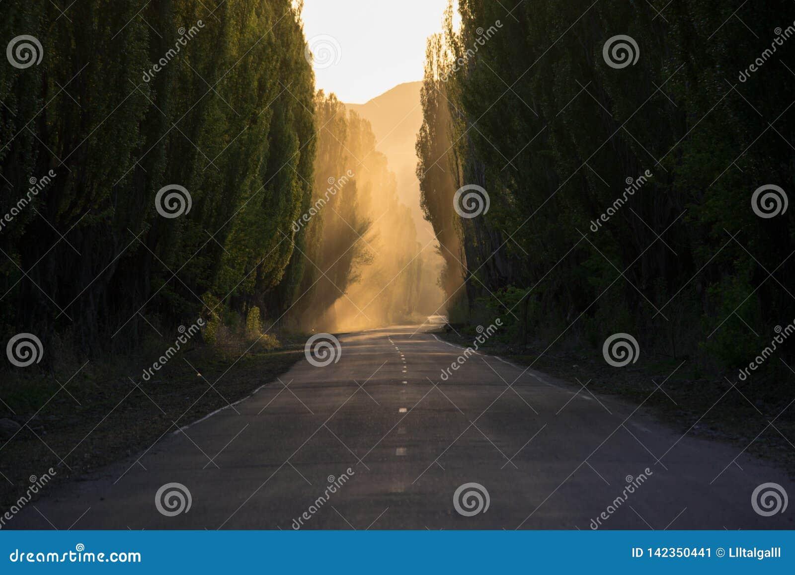 Vägen är tyst rök perspektiv