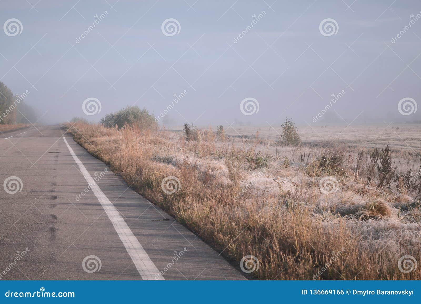 Vägen går in i avståndet in i dimman Rimfrost på gräs