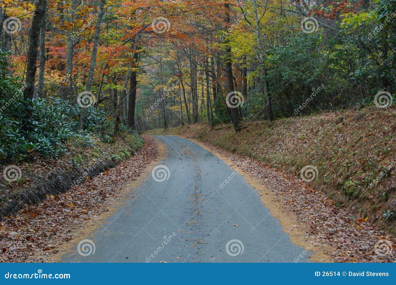 Vägen löpte