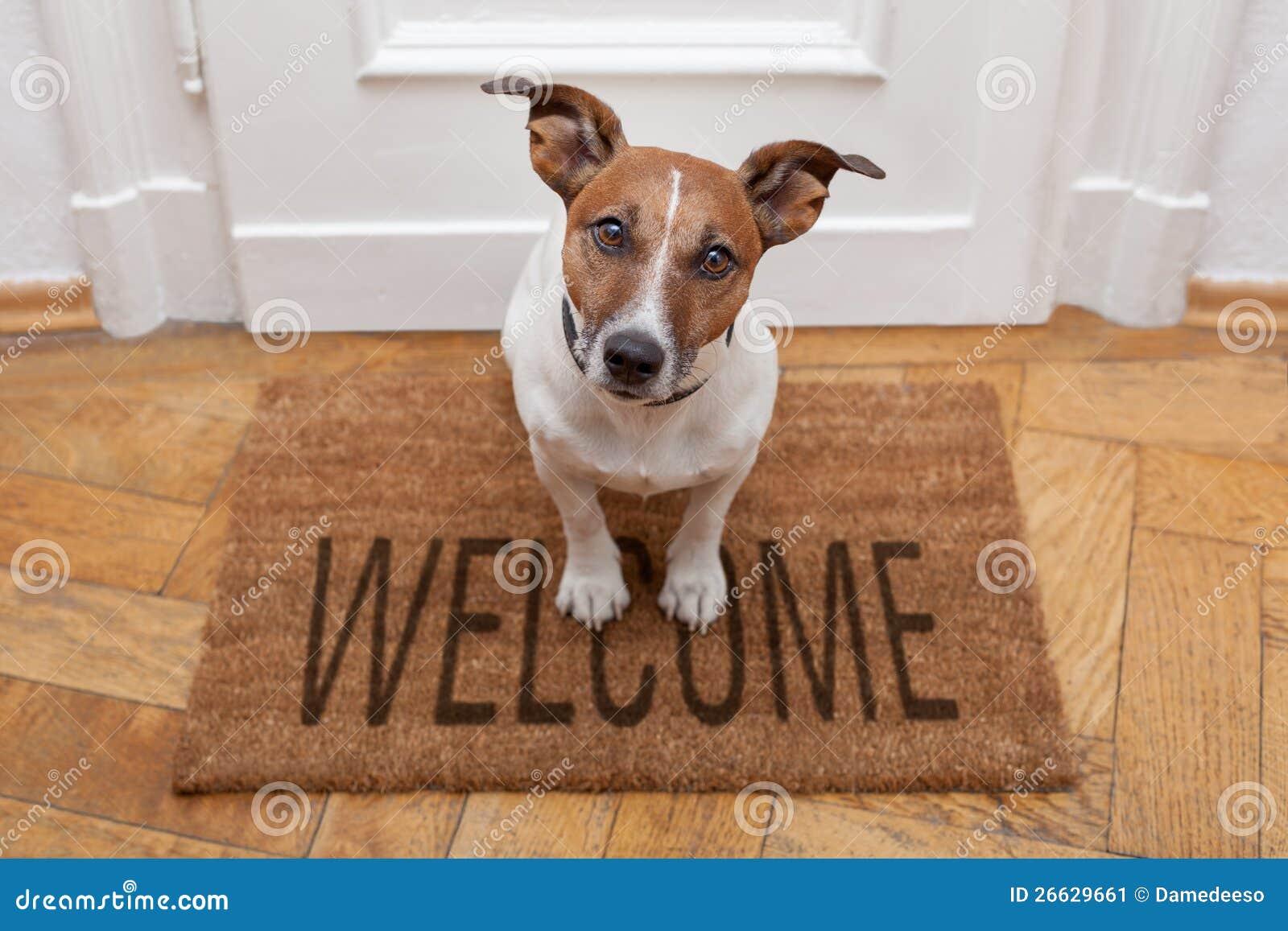 Välkommen utgångspunkt för hund