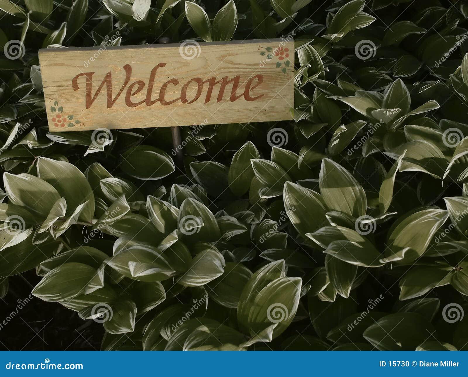 Välkomnande