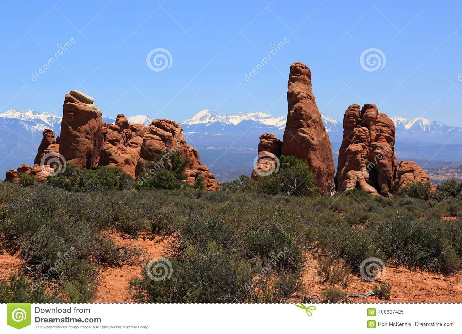 Välva sig nationalparken utah