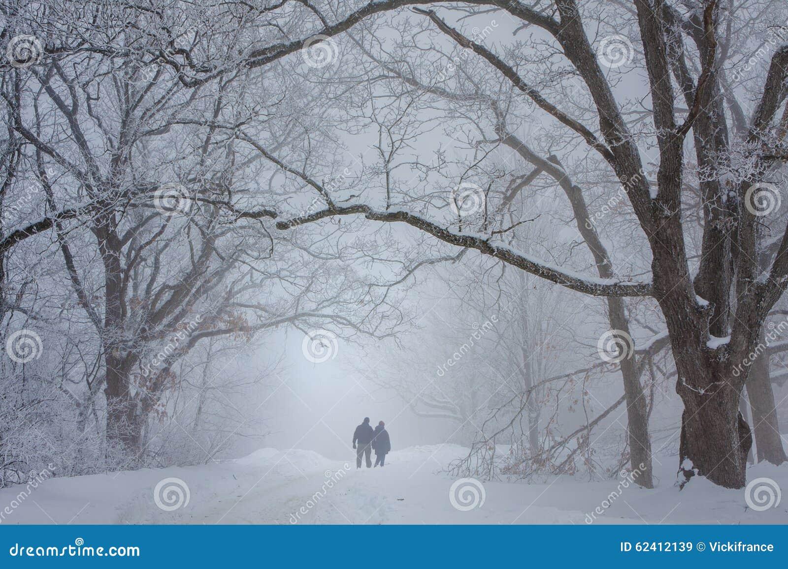 Vänner som går i snön